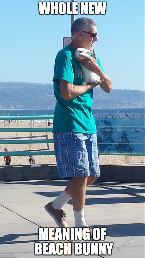 5 - Man carrying cute rabbit by the sea-side brings whole new meaning of the phrase 'beach bunny'
