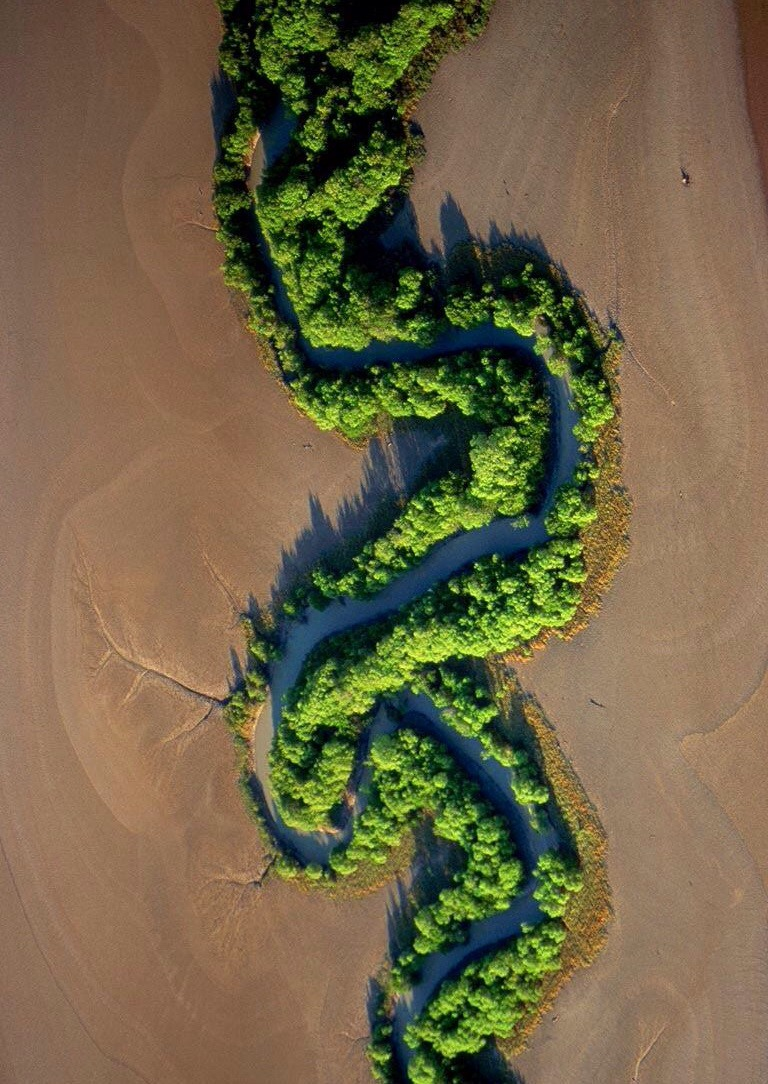 13 - Cool pic of a river winding through the desert and blooming stuff along the way.
