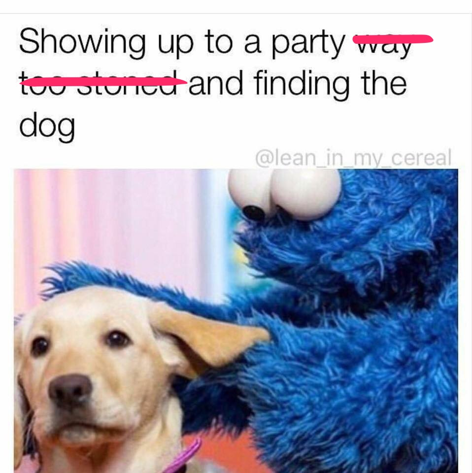 41 - Funny meme of cookie monster playing with puppy about how it feels when you are too stoned at a party and find the dog to play with.