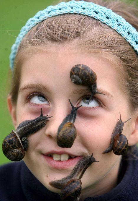 1 - Snails