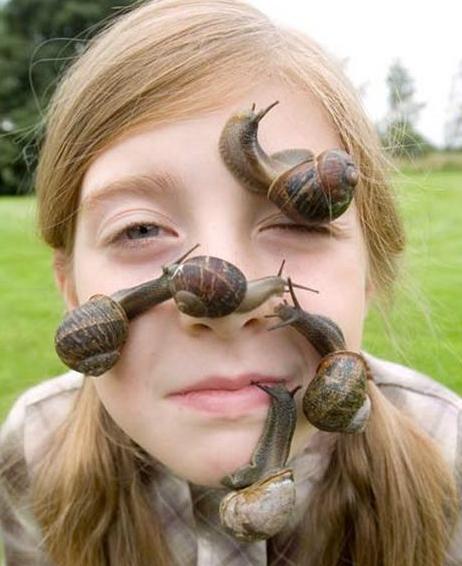 5 - Snails