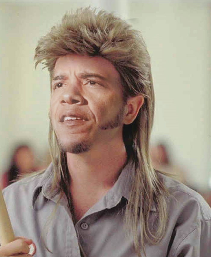 Purchase A Joe Dirt Mullet Wig 17