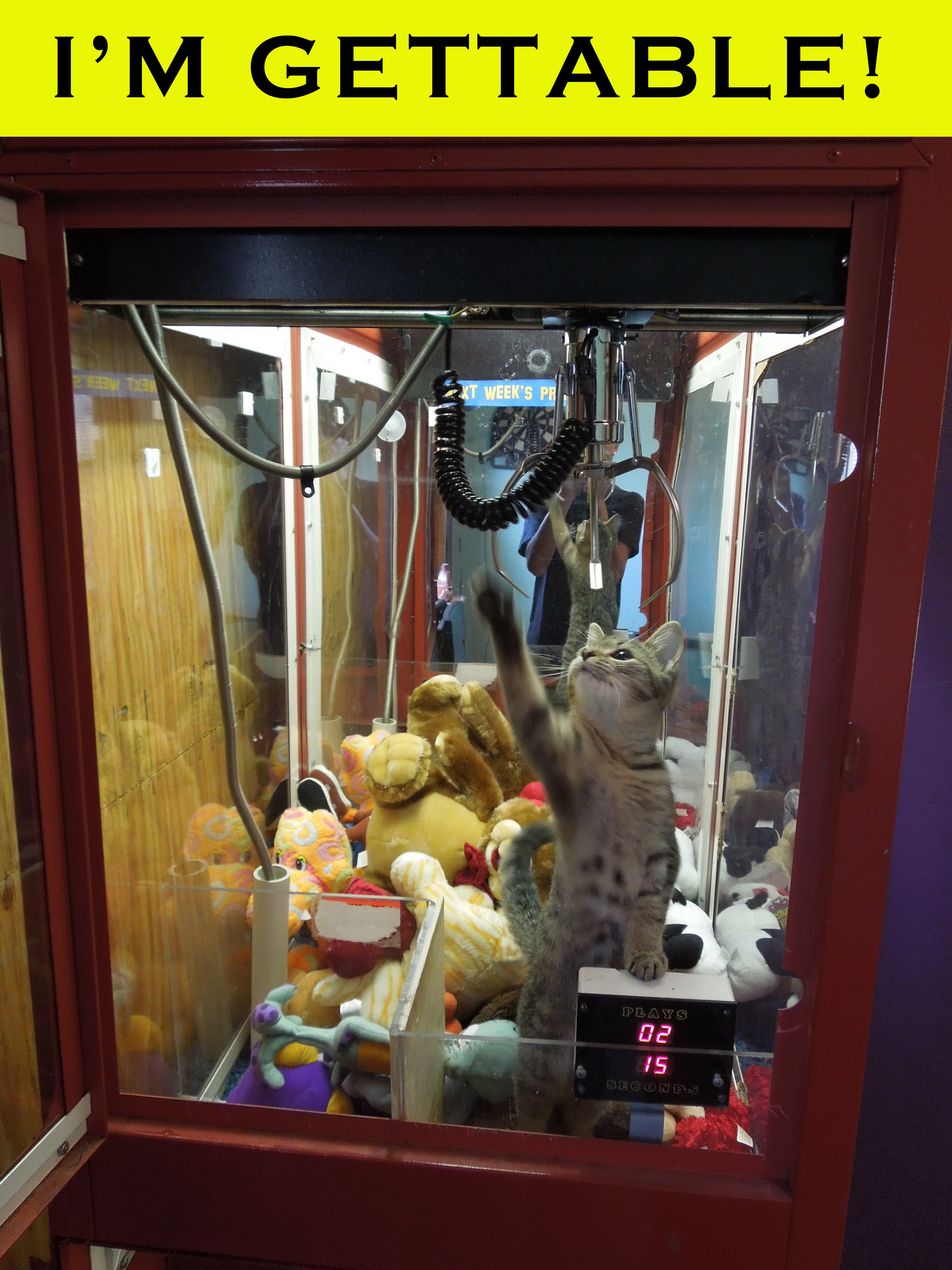 real claw machine