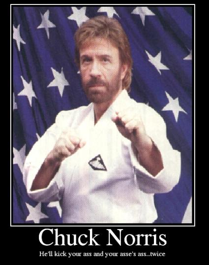 Chuck Norris Demotivational Gallery EBaums World - 22 ridiculous chuck norris memes
