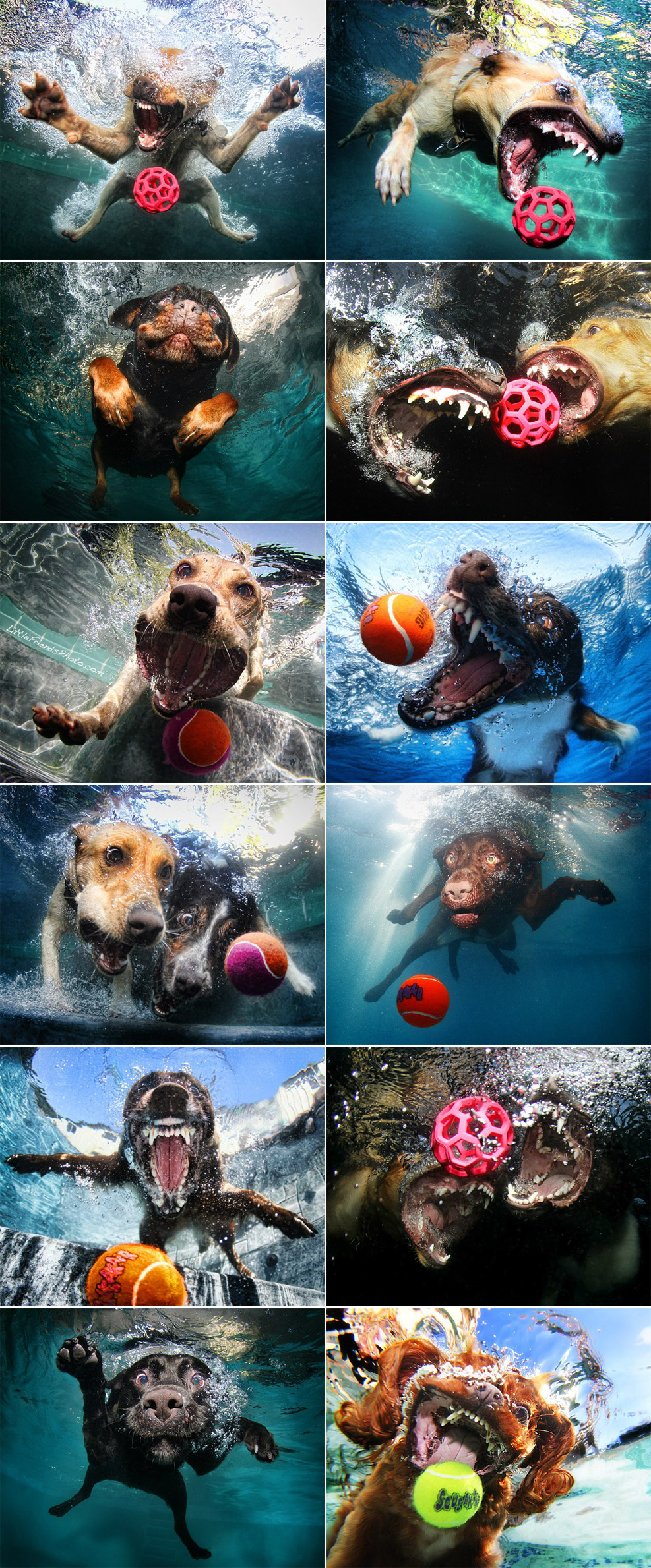 Water Funny Pictures