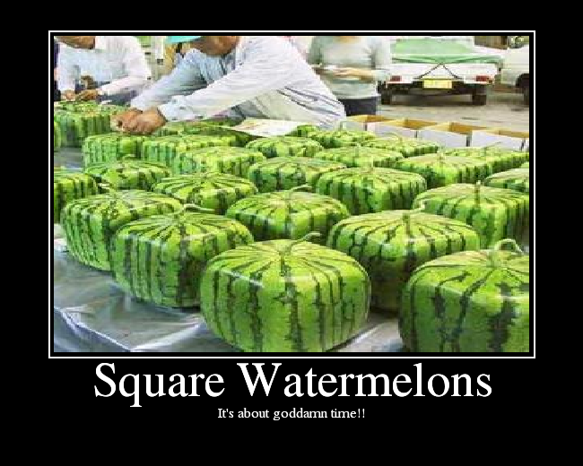 Square watermelons picture ebaum 39 s world - Square watermelons how and why ...