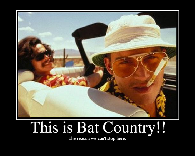 This is Bat Country!! - Picture   eBaum's World