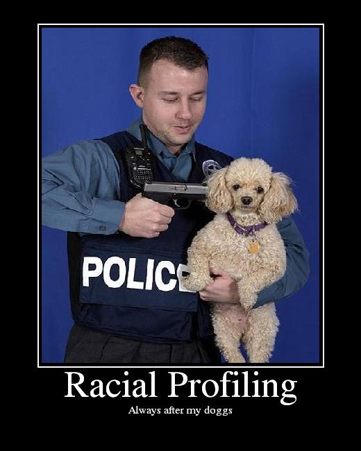 Racial Profiling Essays (Examples)