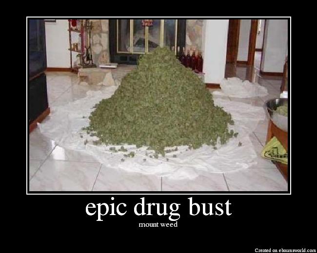 Biggest Drug Bust