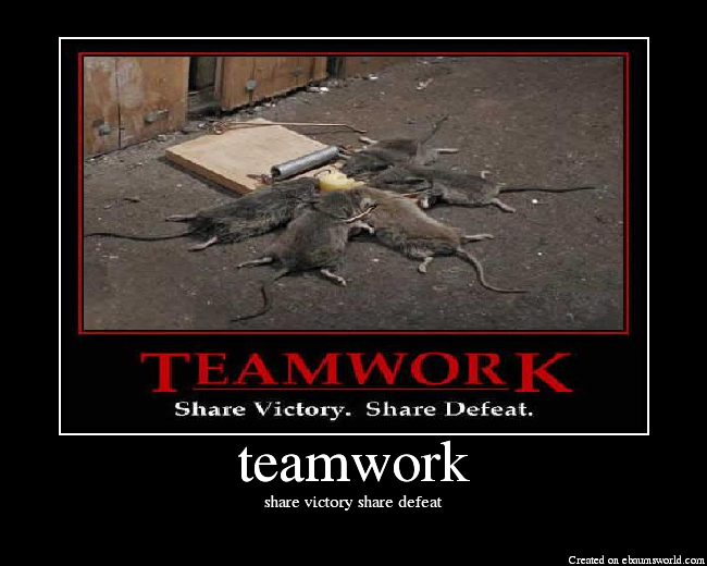Teamwork Picture Ebaum S World