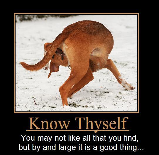 proxy - Know thyself - Quotable Quotes