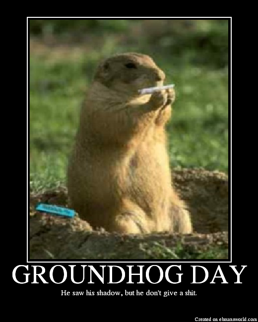 groundhog day funny quotes saying quotesgram