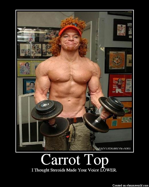 Carrot Top Picture Ebaum S World