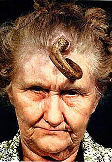 horn lady   picture ebaum s world
