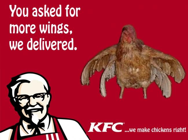 Aninimal Book: KFC - We make chickens right - Picture | eBaum's World