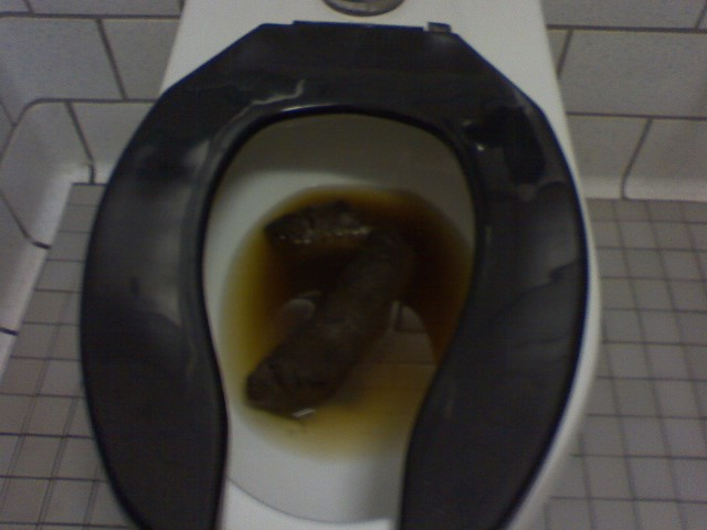 Big Poop in Toilet http://www.ebaumsworld.com/pictures/view/39233/
