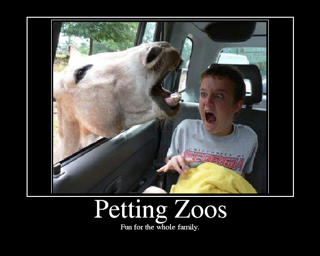 Funny Zoo Meme : Petting zoos picture ebaum s world
