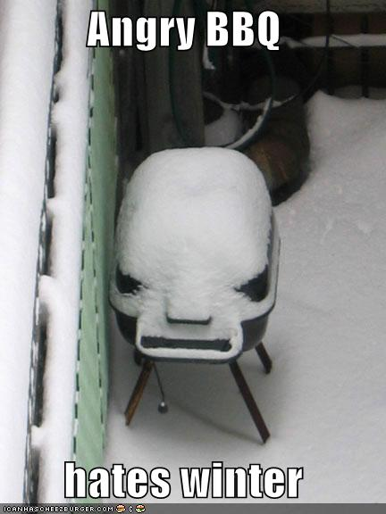 http://cdn.ebaumsworld.com/picture/sociopathichero/funny-pictures-angry-bbq-hates-winter-snow.jpg
