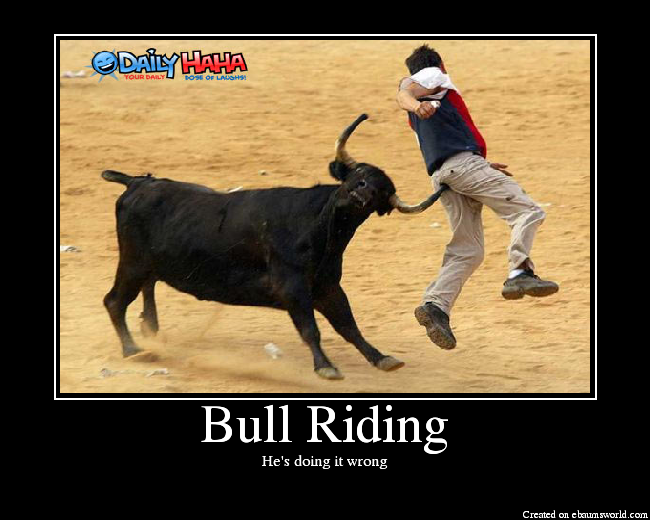 Funny Bull Riding Quotes