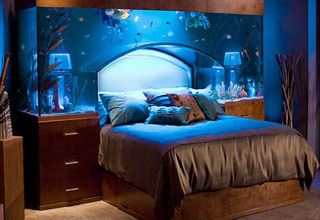 Awesome Beds To Sleep In