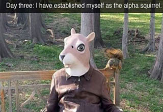 Guy sitting on a bench with a squirrel mask on