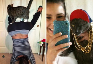 cat on twerking girls bu