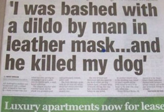 i was bashed bydog a dildo and he killed my dog