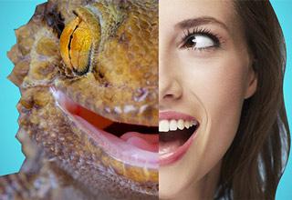 half lizard half woman