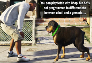 you can play fetch with chop but he may bring back a grenade
