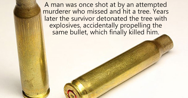 A man was once shot at by an attempted murderer who missed and hit a tree. Years later the survivor d