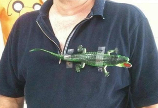 man has alligator taped to his polo.