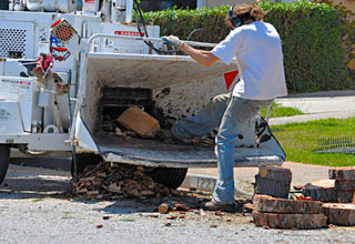guy pushing piece of wood into wood chipper with his foot