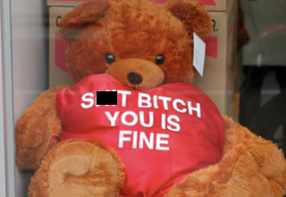 Teddybear holding a heart that says: Shit bitch you is fine.