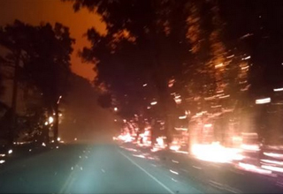 Guy Drives Through a Terrifying Forest Fire