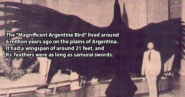 Disturbing Facts About History You Won't Learn In School