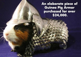 Ridicilous Items Purchased By Wealthy People