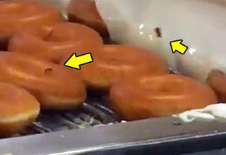 The Horrors of Krispy Kreme Doughnuts