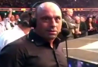 Joe Rogan's Reaction To Ronda Rousey Knockout