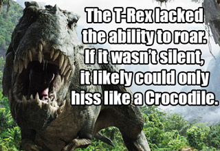 25 Facts You Likely Didn't Know