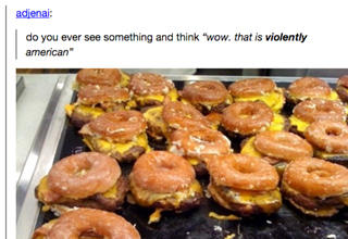 16 Hilarious Times America Got Roasted on Tumblr