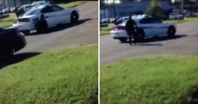 Dog Destroys Woman S Car