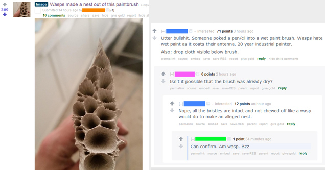 Painbrush that was claimed to be made by Wasps - bs