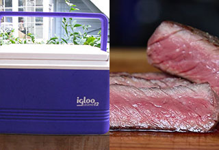Picture of cooler and perfectly cooked steak - cover image for how to use the two - fixed thumb
