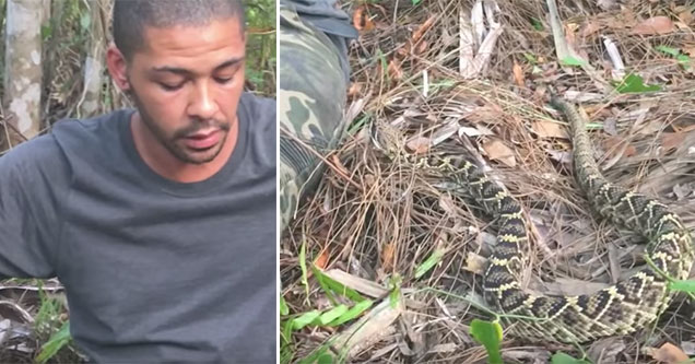 guy remains calm even when a rattle snake slithers into his lap