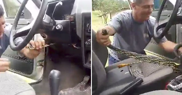 Deadly snake almost kills driver of car