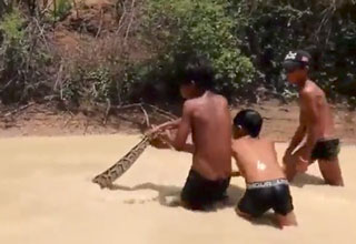 three kids playing with a huge snake