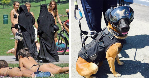 women in hijabs and girls sunbathing helicopter jump dog