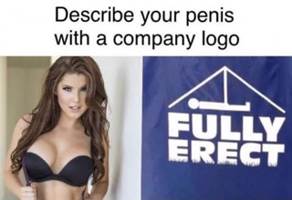 dank meme of hot girl asking to describe your penis with company logo FULLY ERECT