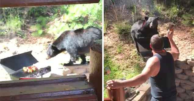 man faces down a bear who wants to eat his bbq