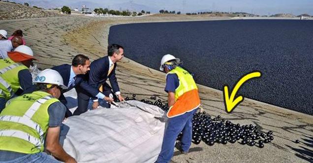 Black balls in California reservoir